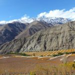Elqui Valley – Chile