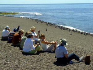 Estancia-San-Lorenzo-penguin-colony-Peninsula-Valdes (2)