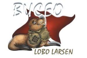 Lobo-Larsen-Puerto Madryn Argentina