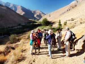 Turismo-Migrantes-Pisco-Elqui-Chile (3)